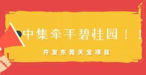 中集与碧桂园签约合作 将增资控股开发碧桂园天宝项目