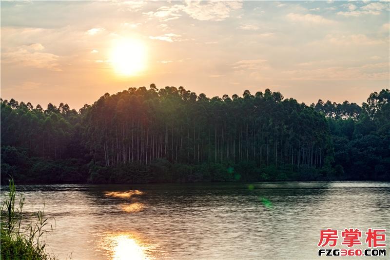 绿地·樾湖国际生态城_广州绿地·樾湖国际生态城_广州房掌柜