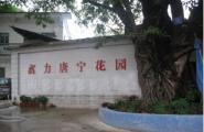 富力唐宁花园