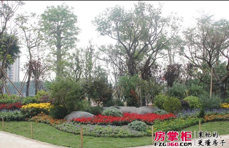 中信西关海园林实景