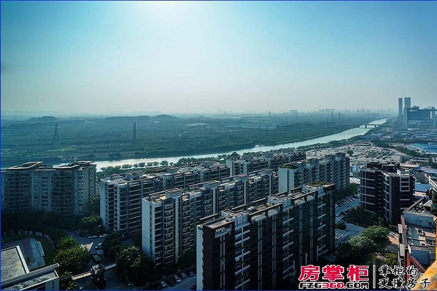 江山国际实景图