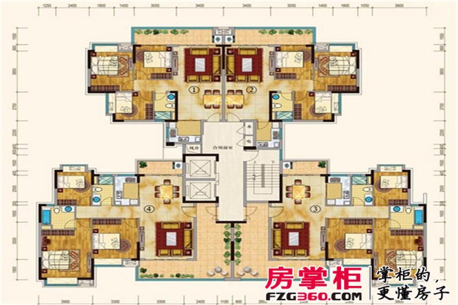 19号楼02单元平层图
