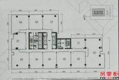 41F平面图