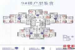 9#楼户型平面图
