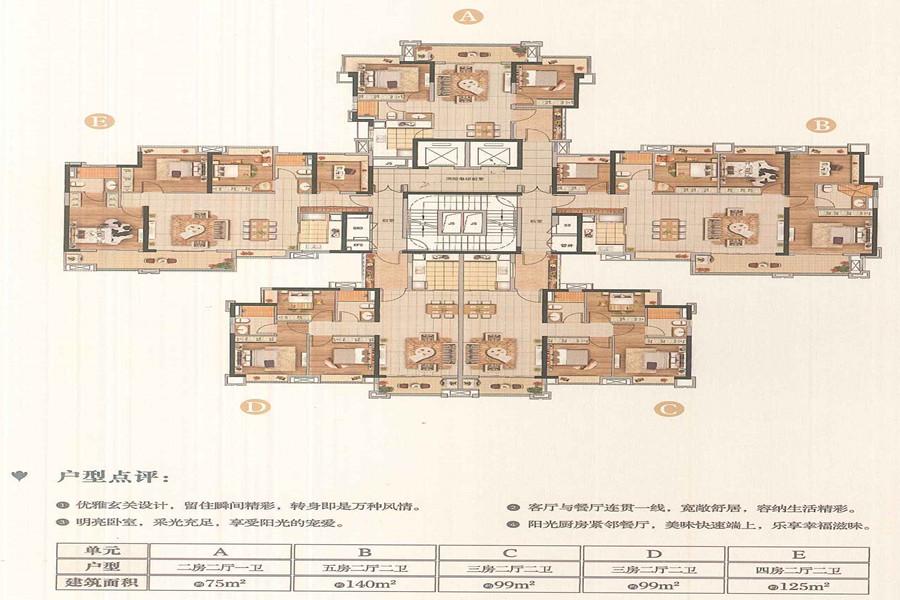 D7栋户型平面图
