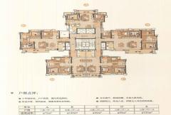 D9栋户型平面图
