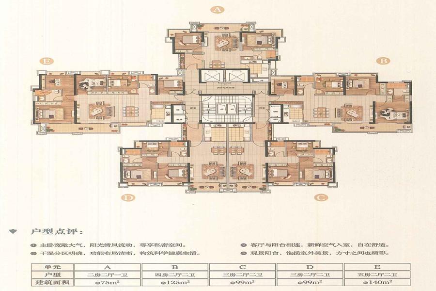 D8栋户型平面图