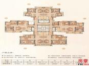 D5栋洋房户型平面图