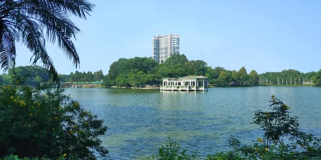 新世界天河公园.webp.jpg