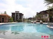 园林泳池实景图