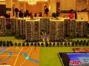 中洲天御沙盘图