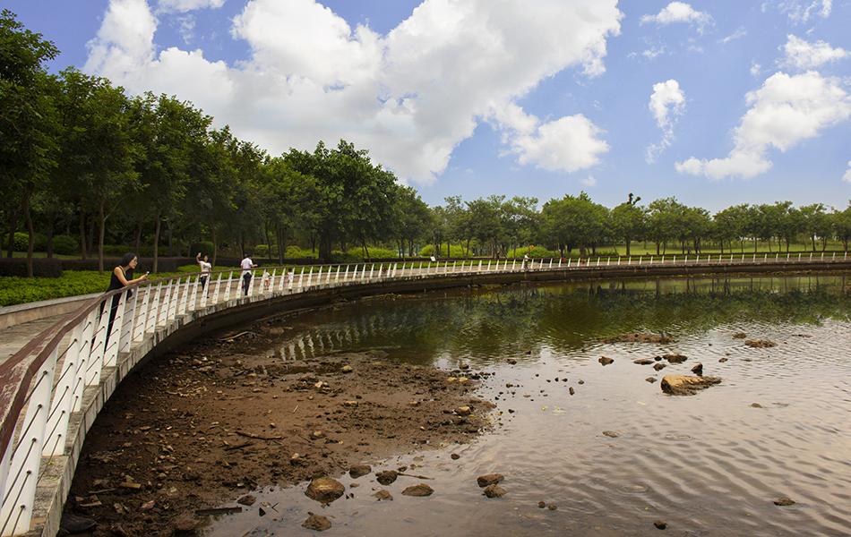 与中式建筑一样,这种原木拼起的栈道也成为了金山湖公园重要的组成部分。