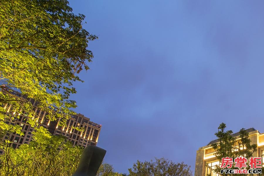 泰丰千花岛夜景
