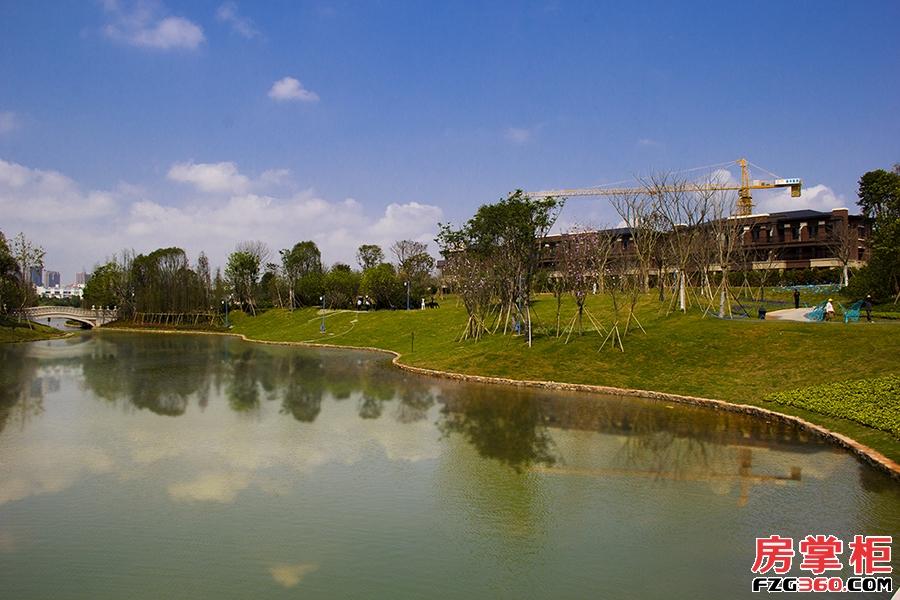 泰丰牧马湖园林实景