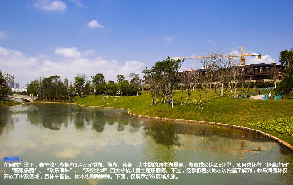 """园林篇:在园林打造上,泰丰牧马湖拥有3.4万�O悦湖、隐湖、沁湖三大主题的原生湖景观,湖岸线长达2.5公里,项目内还有""""迷离庄园""""、""""坚果乐园""""、""""欢乐滑坡""""、""""天空之城""""四大分龄儿童主题乐园等。不过,经掌柜君实地走访拍摄了解到,牧马湖园林仅开放了少数区域,且林中植被、树木也刚刚栽种。下面,仅展示部分区域实景。"""