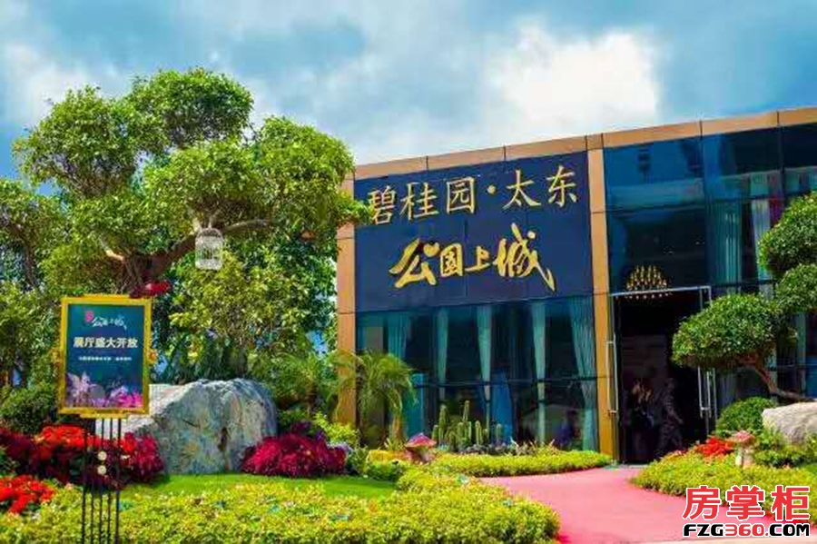 碧桂园太东公园上城最新实景