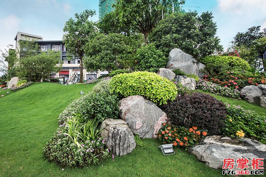 碧桂园太东公园上城-实景拍摄
