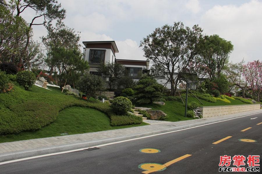 方圆东江月岛-园林实景拍摄