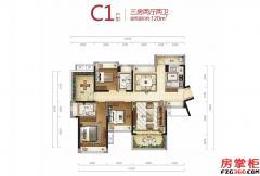 C1户型-120�O-3房2厅2卫