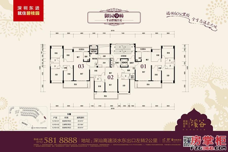 碧桂园润杨溪谷9栋洋房平层图