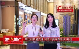 独家连线邓志旺:粤港澳大湾区买房首选中山 惠州性价比高