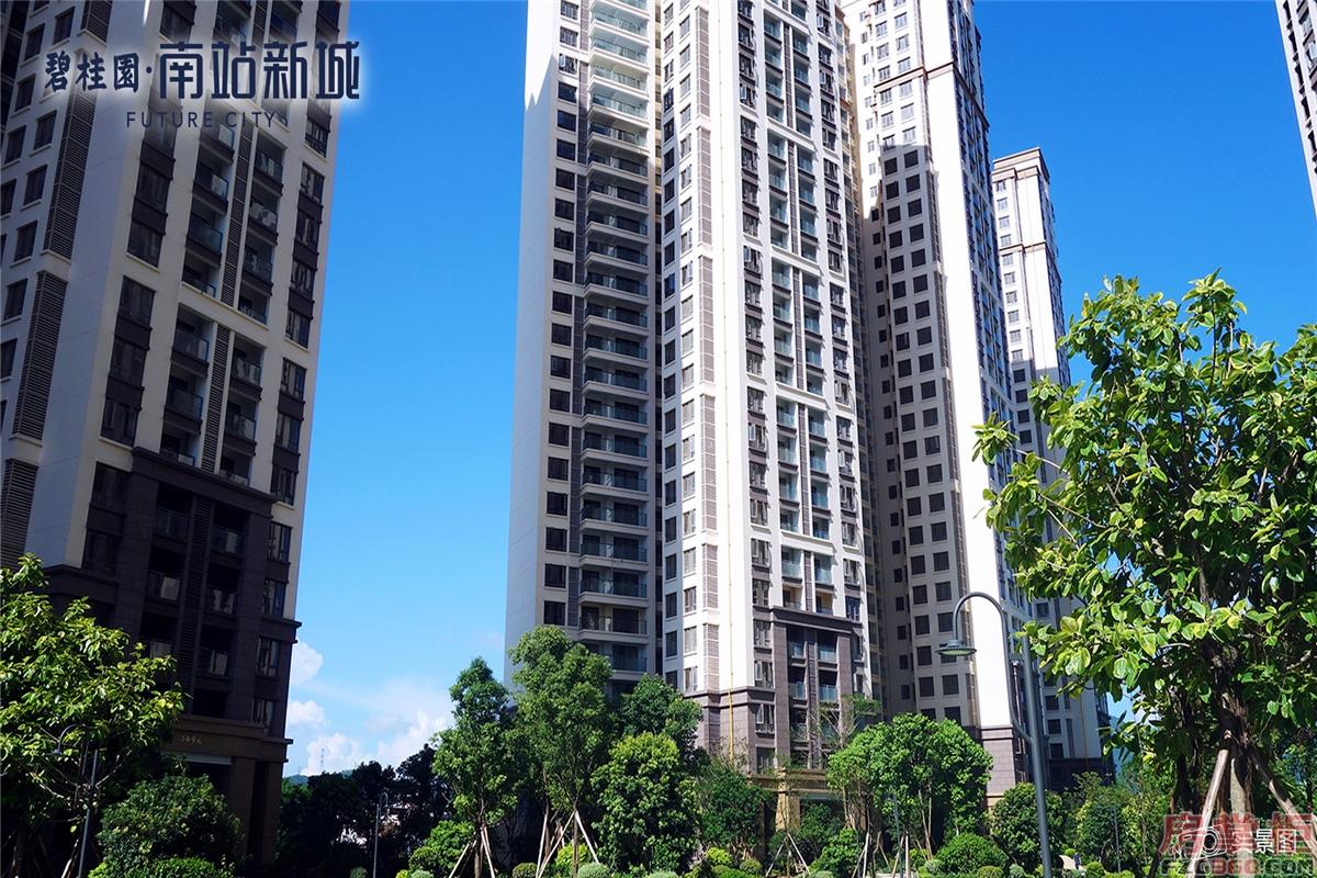 碧桂园南站新城实景