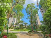 碧桂园星悦园林景观图