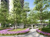 中海阳光橡树园园林效果图