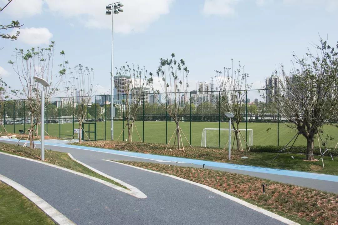 前海运动公园.jpg