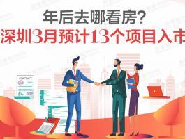 深圳楼市回暖 3月预计13个项目入市